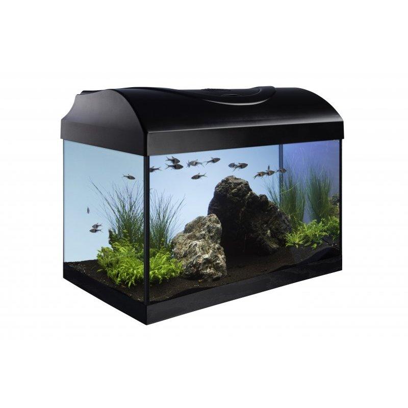 aquarium set diversa startup set 40 cm komplett set einsteiger set. Black Bedroom Furniture Sets. Home Design Ideas