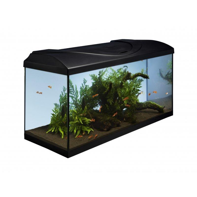 innovative aquariumtechnik f r ihre gl cklichen fische mit dem diversa startup set 120 jetzt. Black Bedroom Furniture Sets. Home Design Ideas